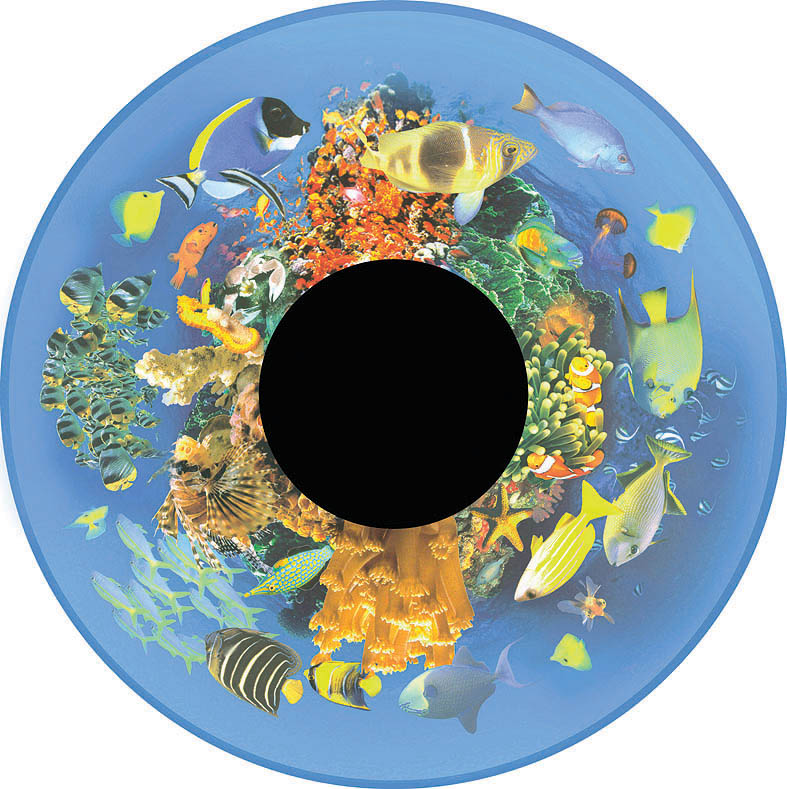optikinetics-tropical-fish-fg7263.jpg