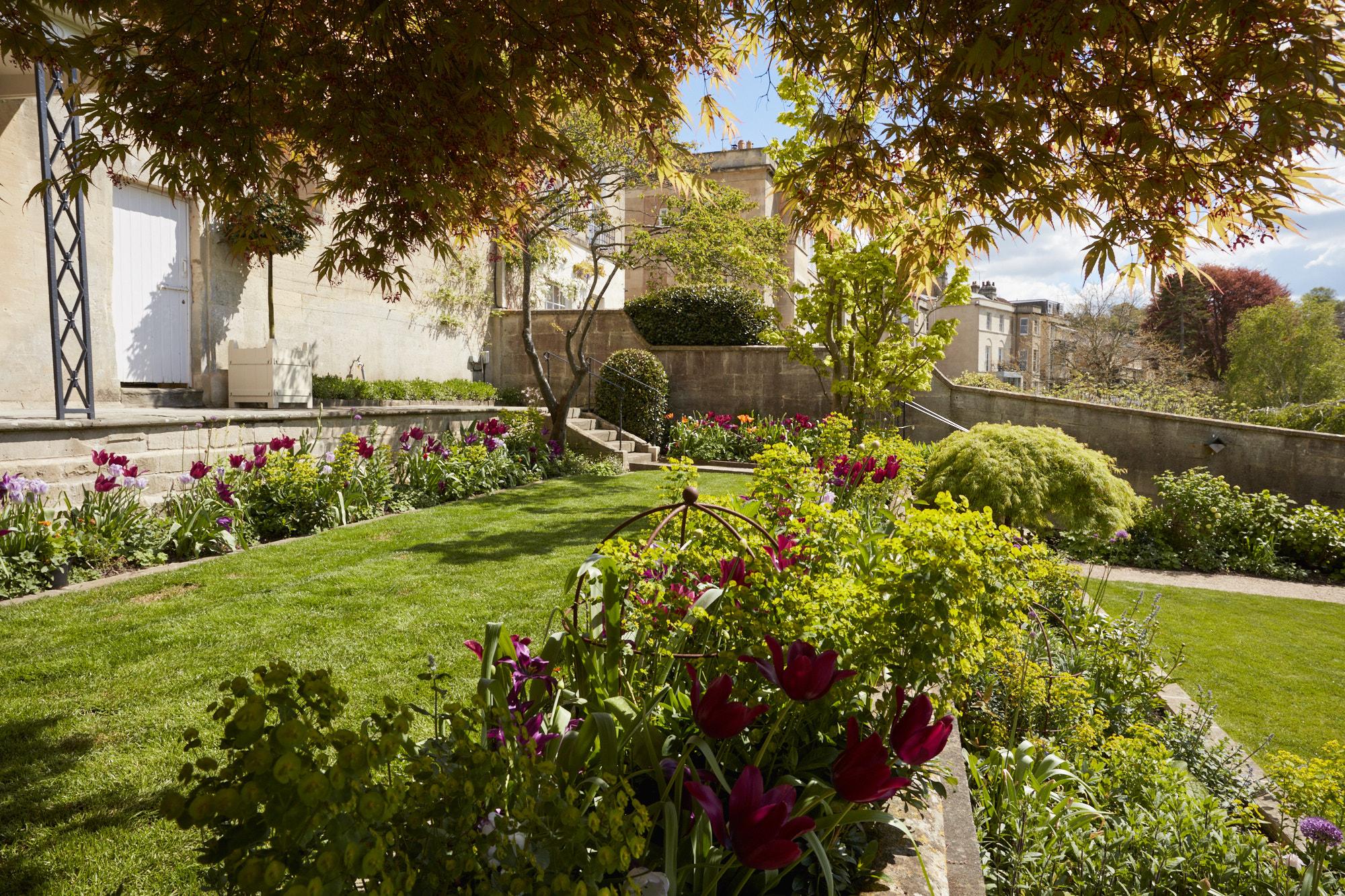 Bath garden April'17_0125.jpg