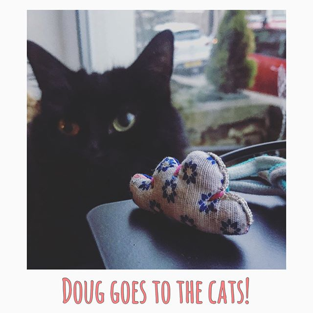 Doug goes to the Cats! Thank you @eloisvh for spreading the word :) We are loving your cats Sally and Alfie with the Doug 🐈☁️