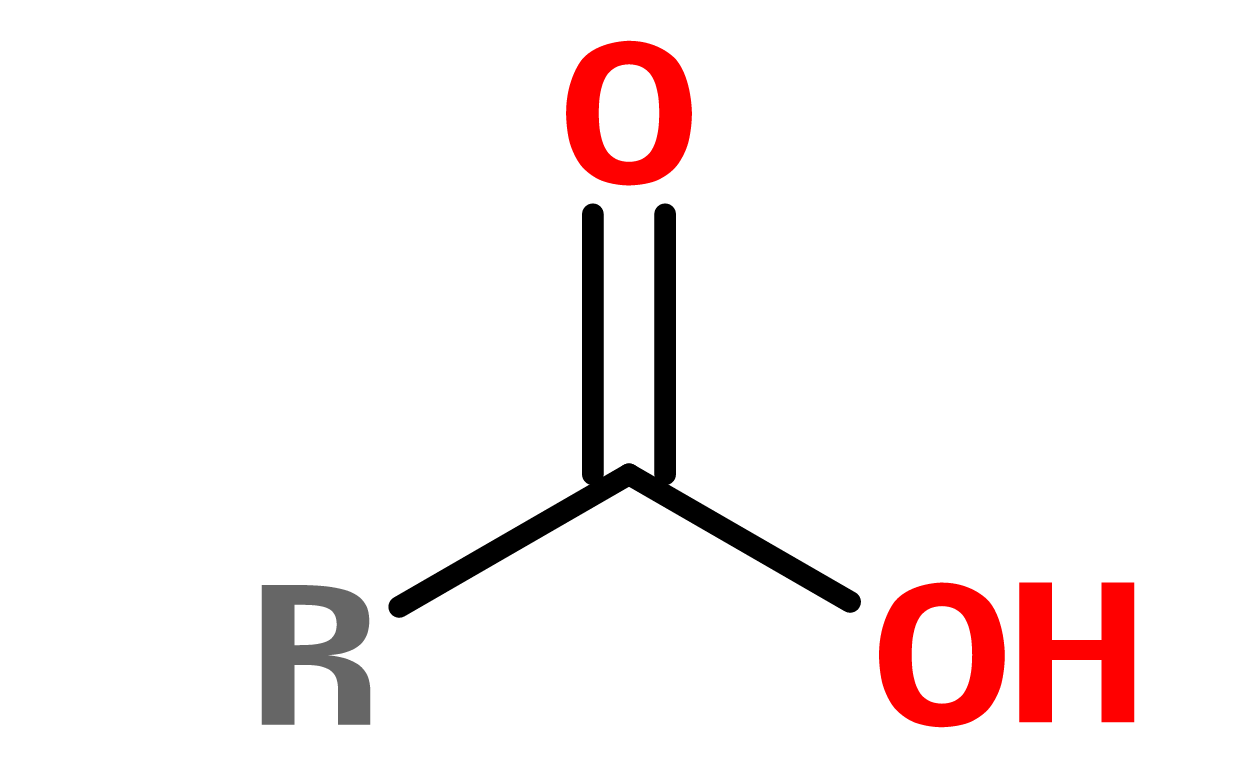 Figure 4. General structure of carboxylic acid