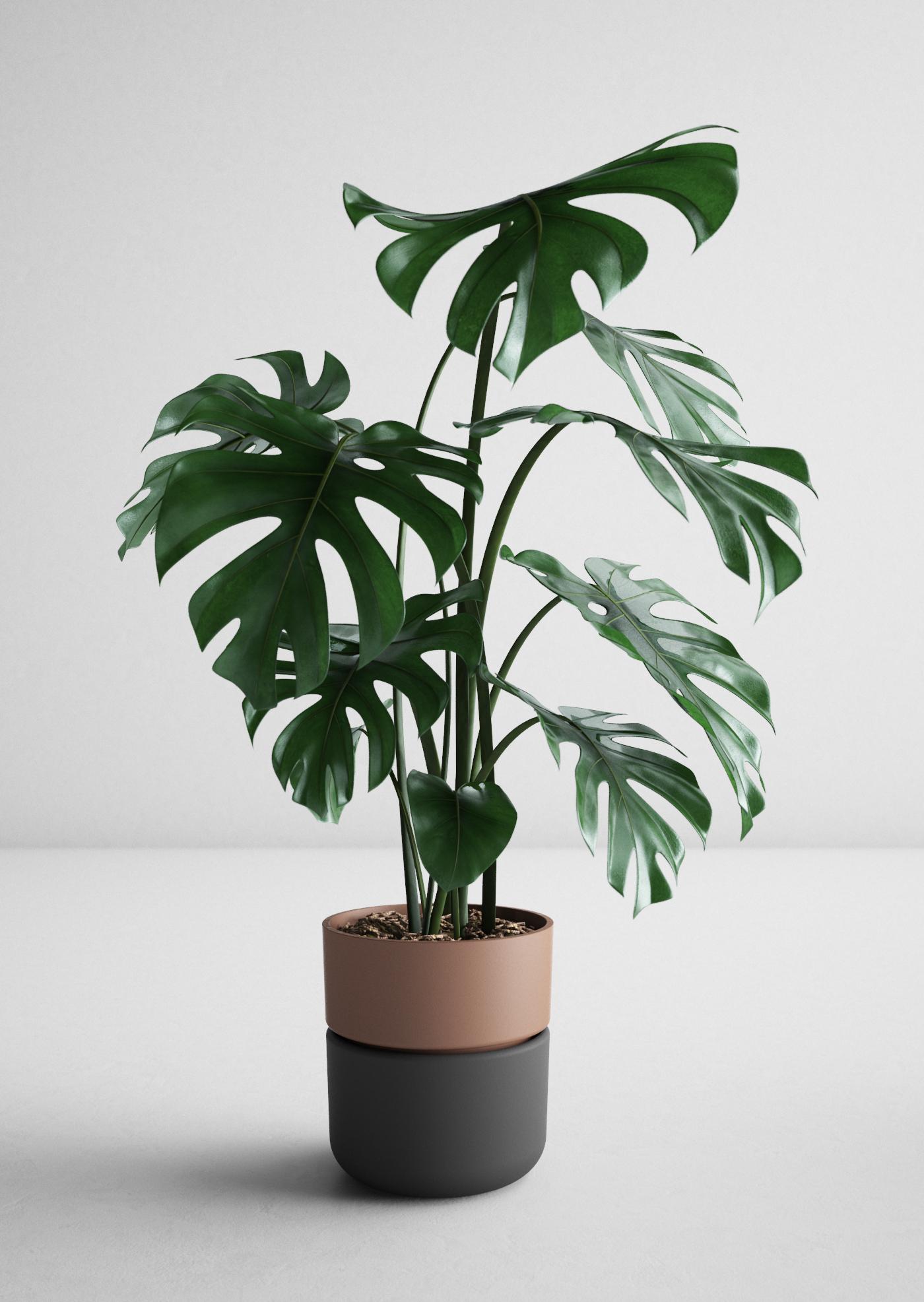 haenke_deFORM_planter I