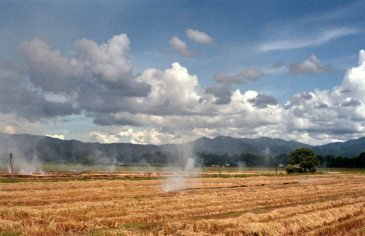 Normal Nuances: Rice Field Burning 1   Film Photography, 17x11 in., 2018