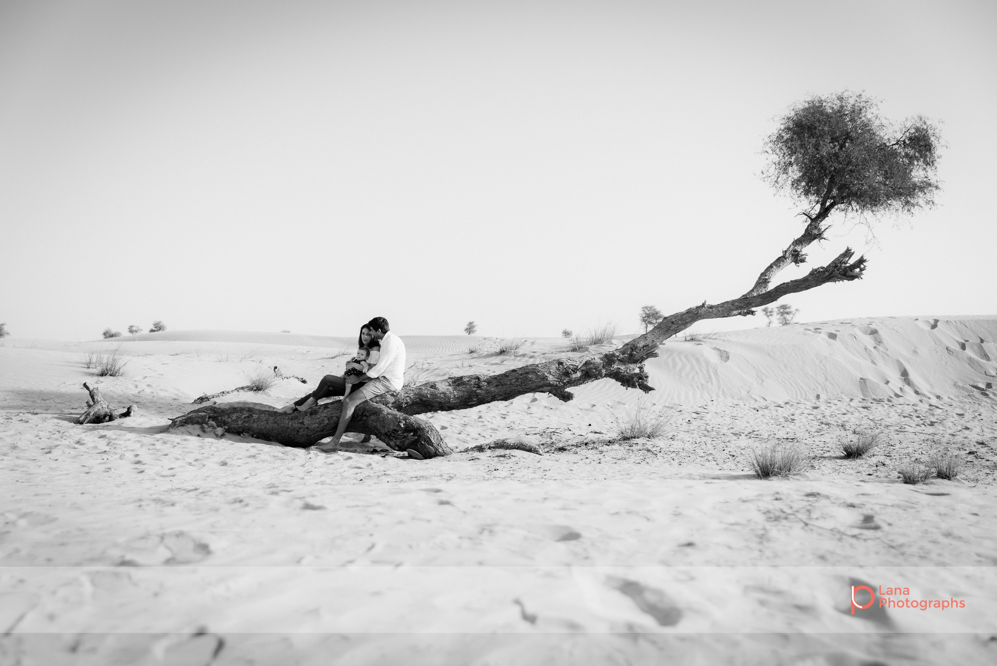 Lana Photographs Family Photographer Dubai Top Family Photographers family sitting on tree branch in desert