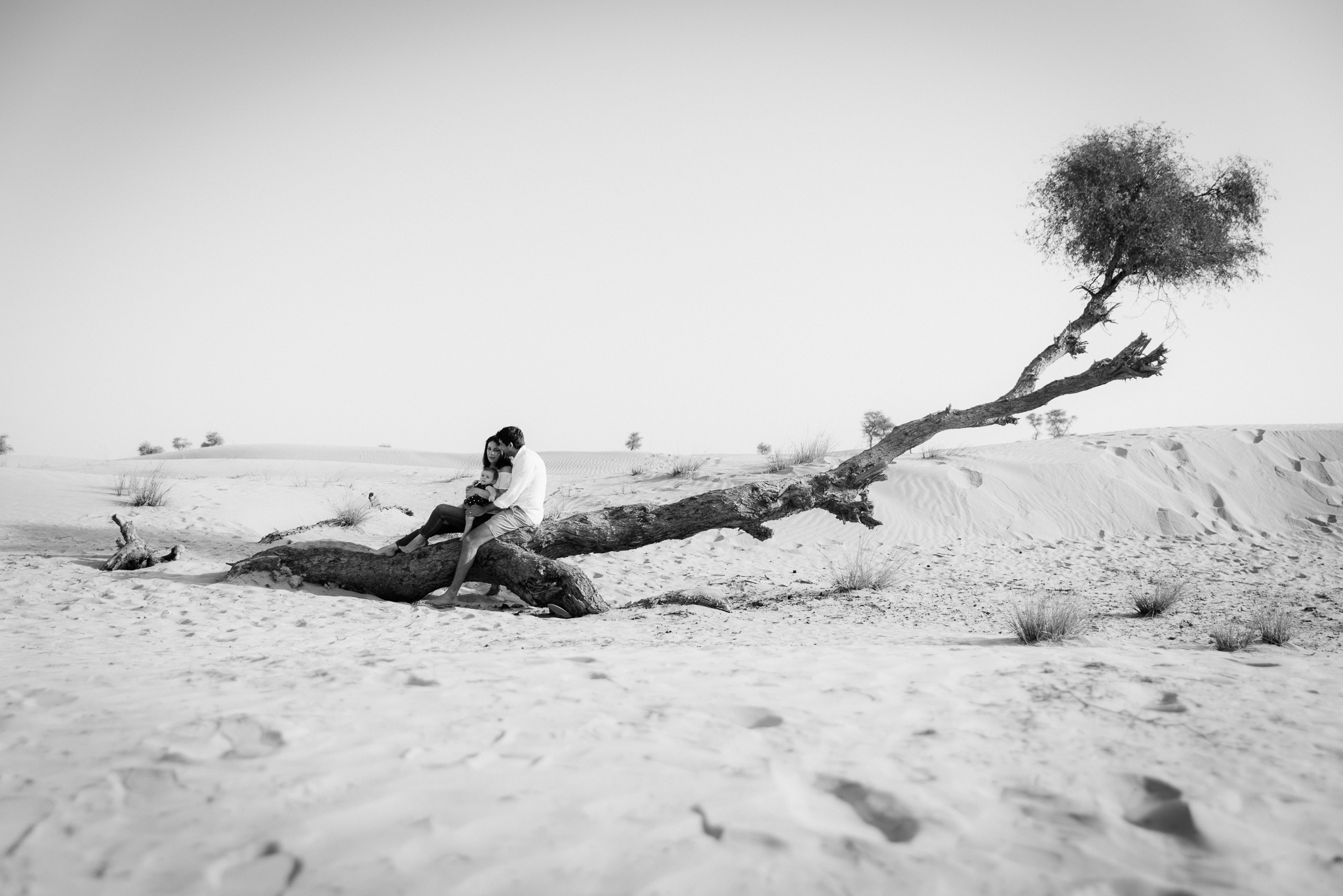 Lana Photographs Family Photographer Dubai Top Family Photographers portrait of a family of three sitting on a tree branch in the desert