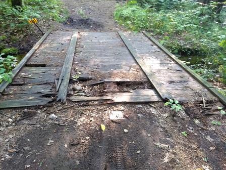 School Forest bridge- rotting- low res.jpg