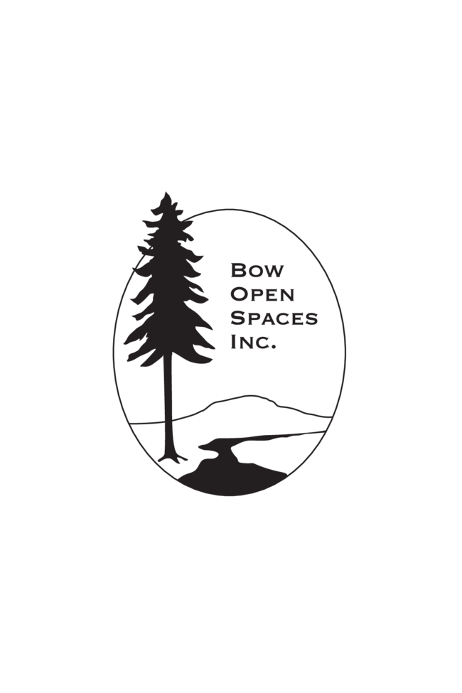 Logo- BOS higher quality.png