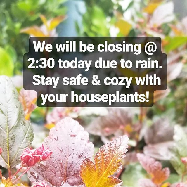 We'll be open 8-5 tomorrow!