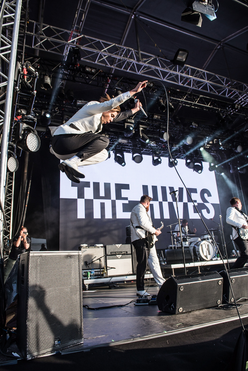 TheHives-7.jpg