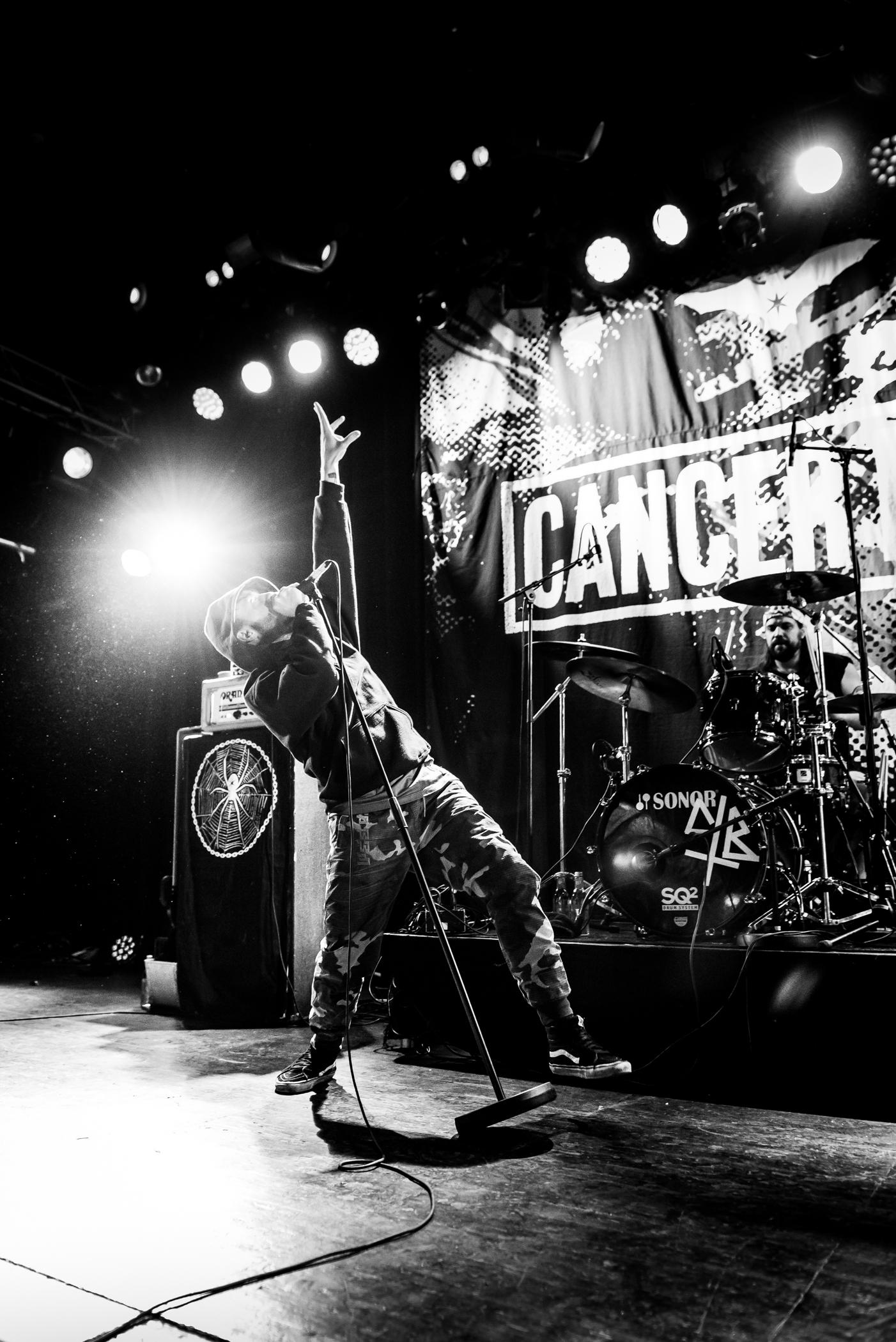 20190324_CancerBats_0046_WEB.jpg