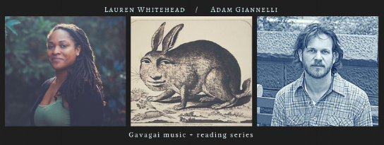 Thurs, November 18th, 2018 @8PM, The Owl:  Lauren Whitehead ,  Adam Giannelli