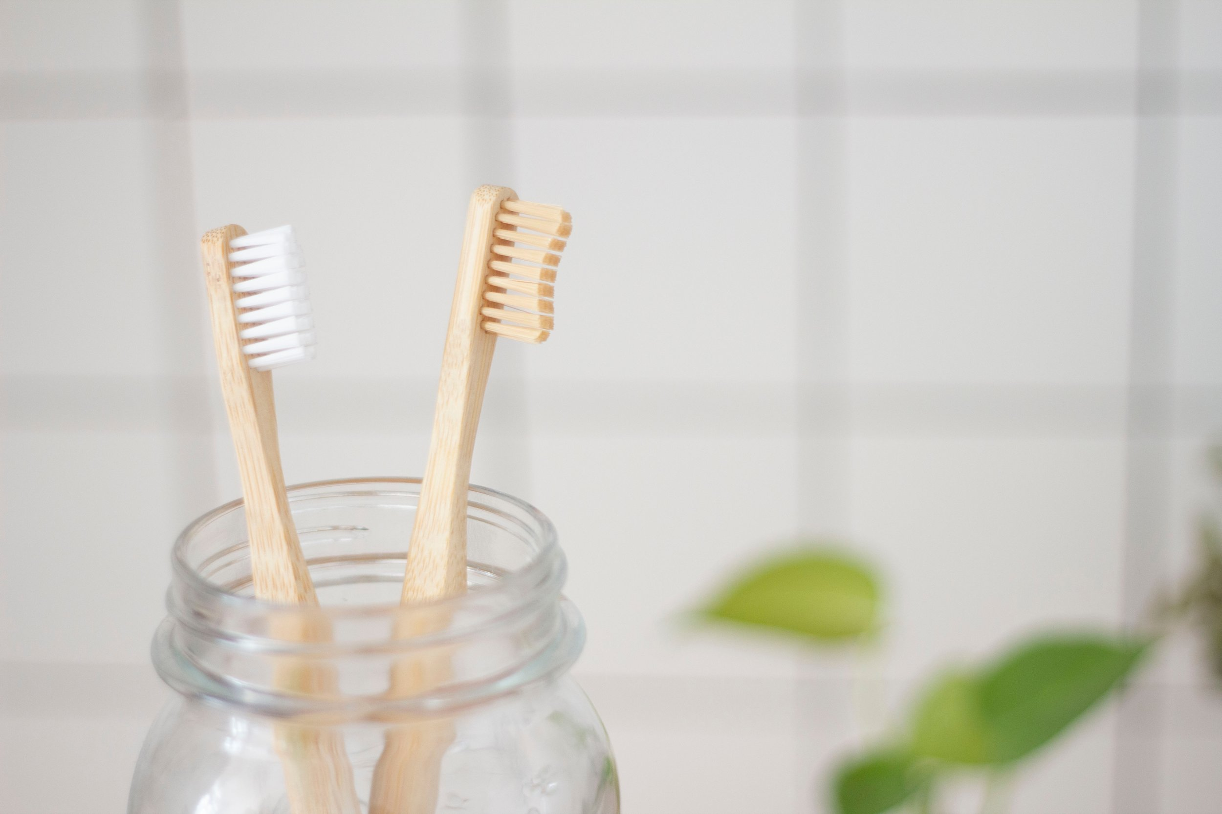 bone collective studio | plastic free July | compostable toothbrush