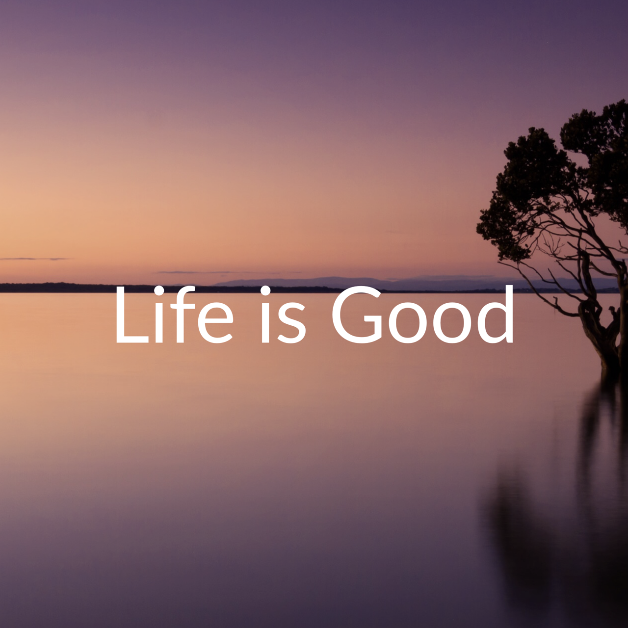 2019-08-04_life-is-good-title-card.png