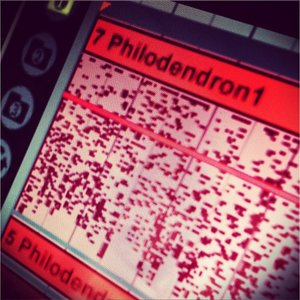 MIDI data from a philodendron