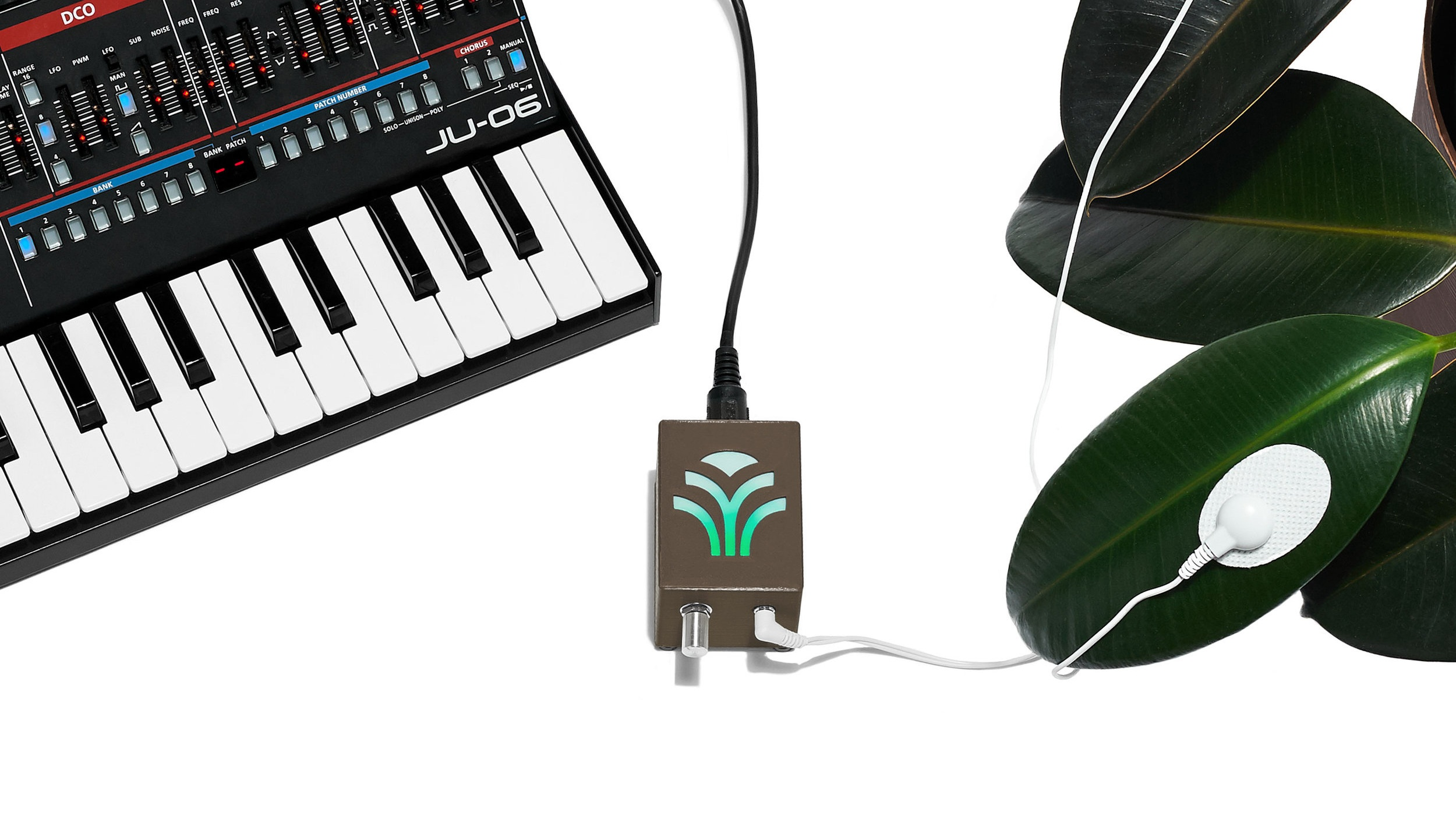 MIDI Sprout Instructions — MIDI Sprout