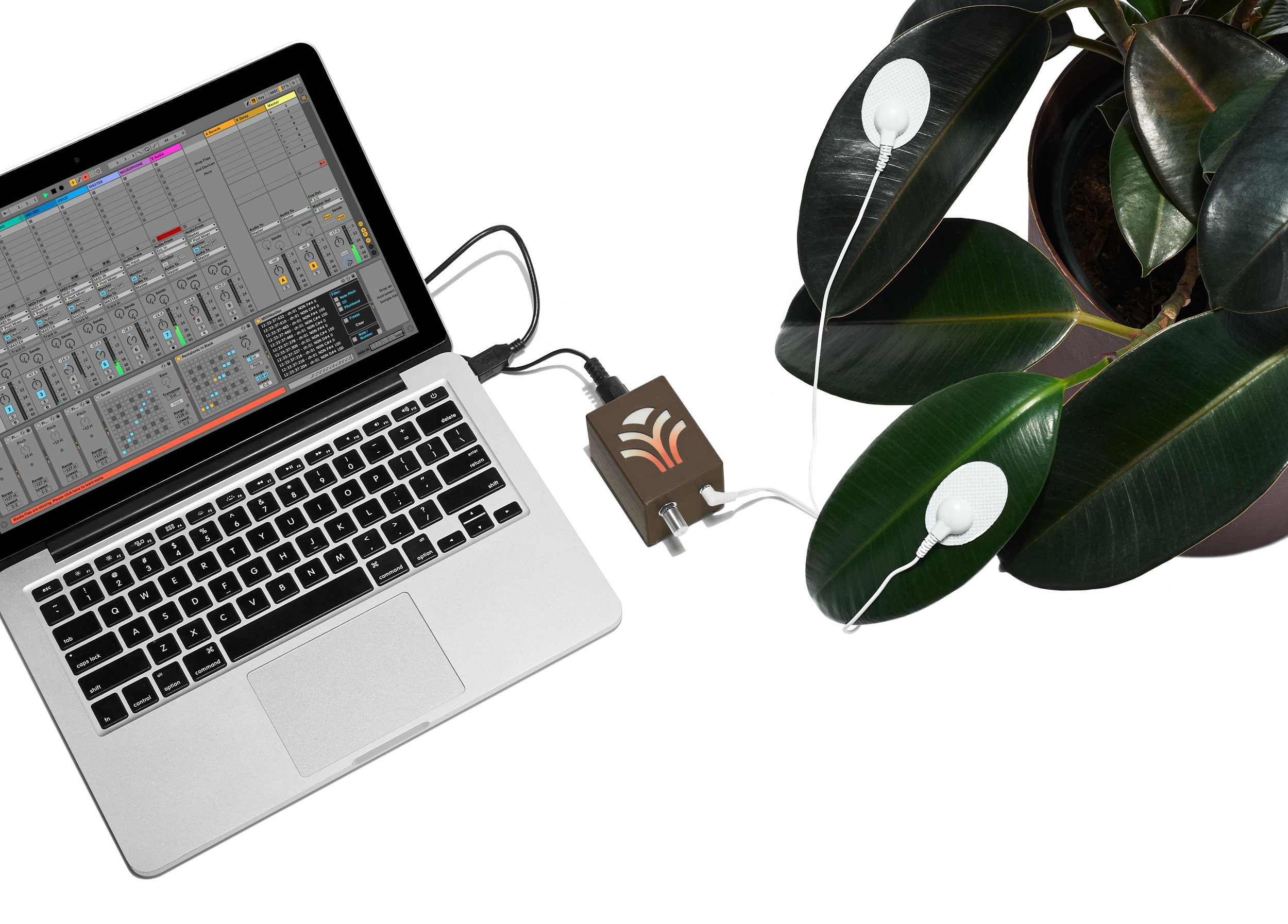 Bioplastic_Midi-Sprout_Connected_To_Laptop_Warm_Final_Feat_Ableton-Live_Brown.jpg