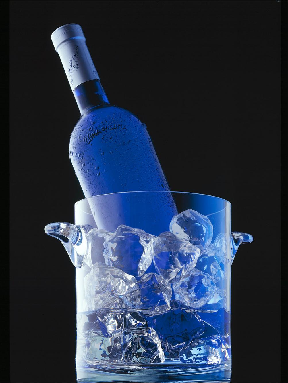 Blue Bottle on Ice