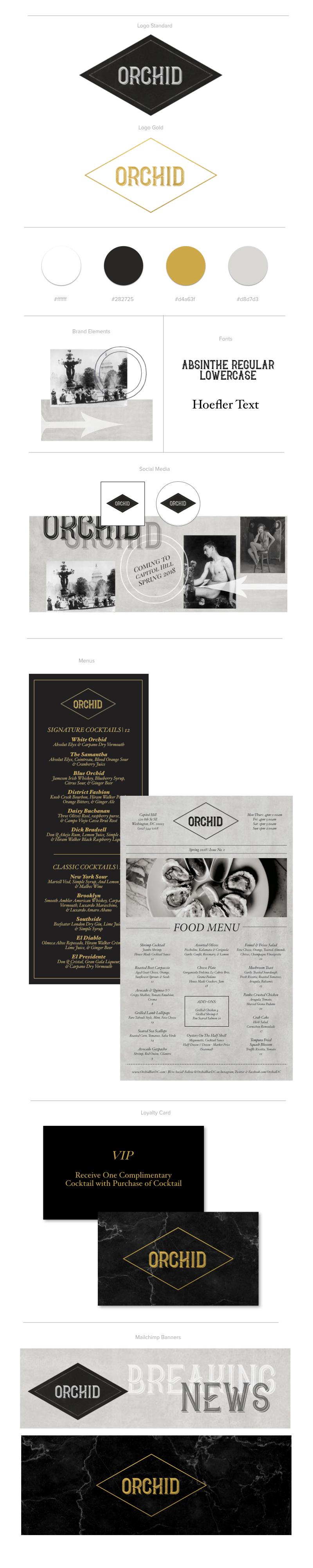 Orchid Branding.001.jpeg
