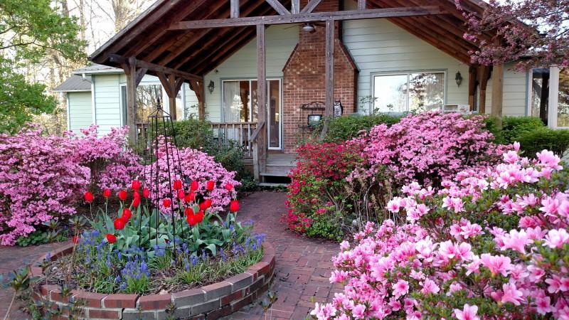 Grandmother's Gardens
