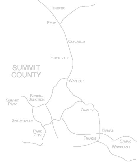 mapforwebSummitCounty-02.png