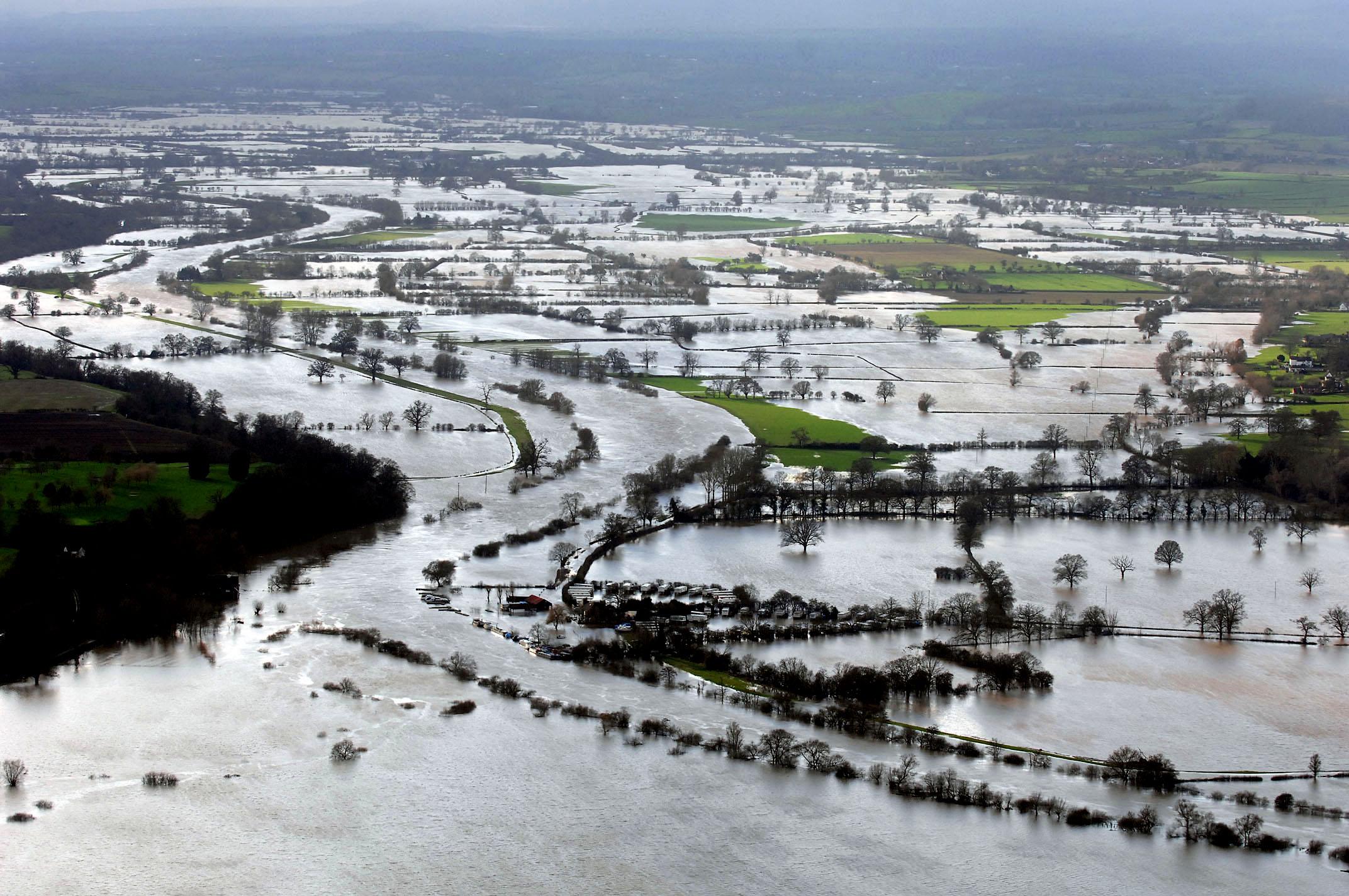 flood4 copy.jpg