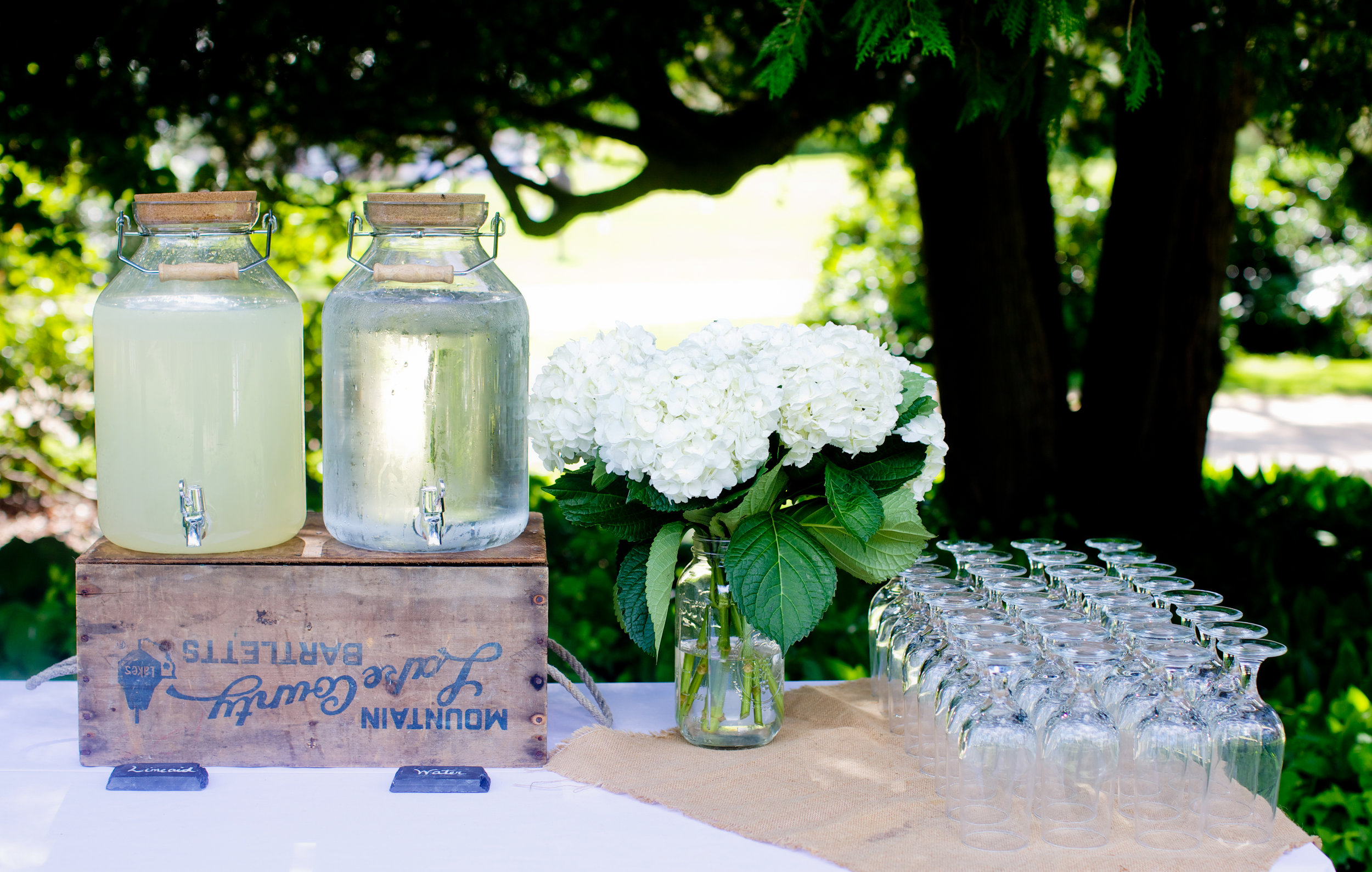 Moraine Farm Wedding-8.jpg