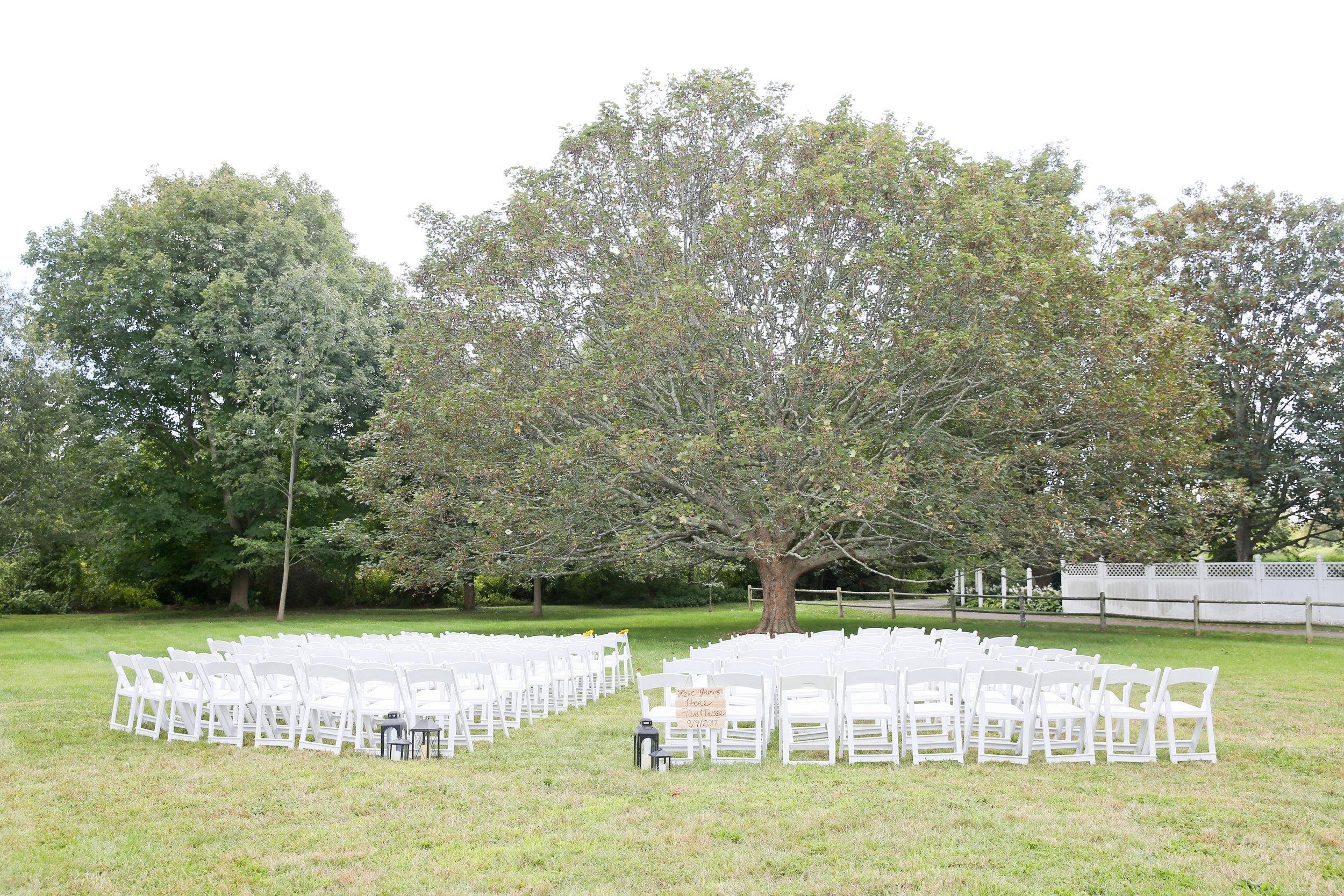 Trissa & Tim's Wedding-46.jpg