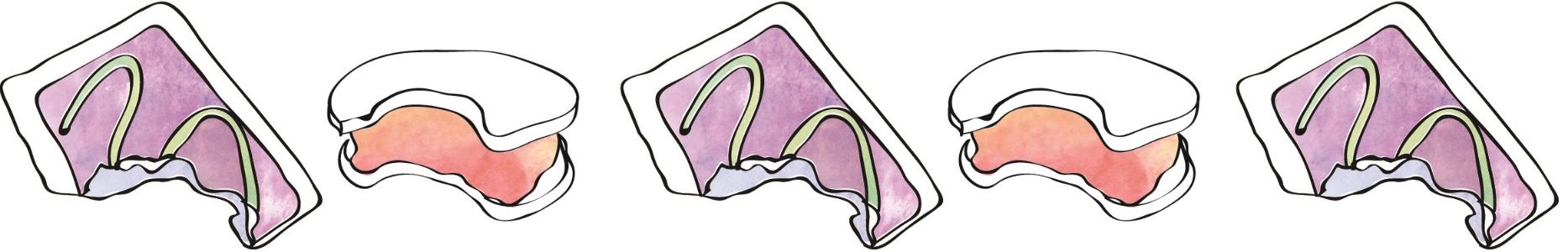 original Sweet Sandies logo - illustrated ice cream sandwich & tart doodles by Stephanie
