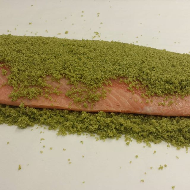 Dill cured Scottish salmon...now, I must wait. #chef  #gourmet