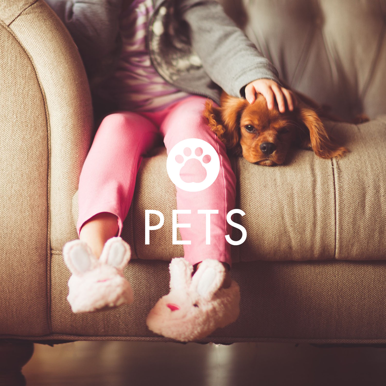 PETS (1).jpg