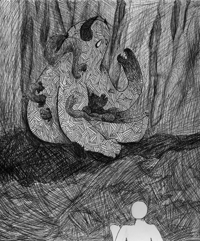 Forest Myth