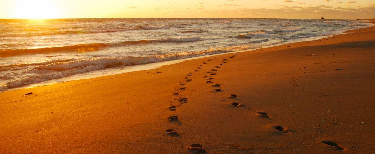 footsteps1.jpg