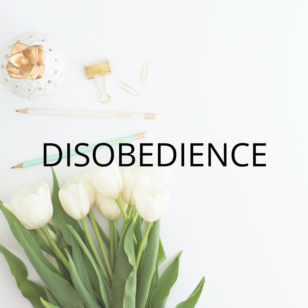 Disobedience website images.png