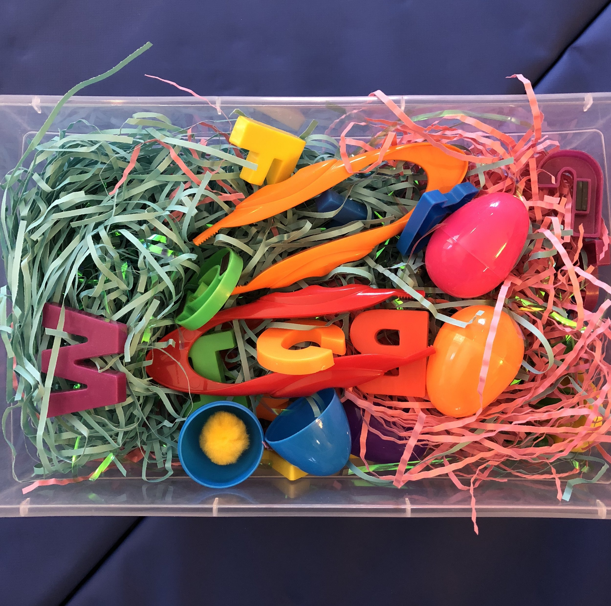 OT Activity of the Day- Sensory Play