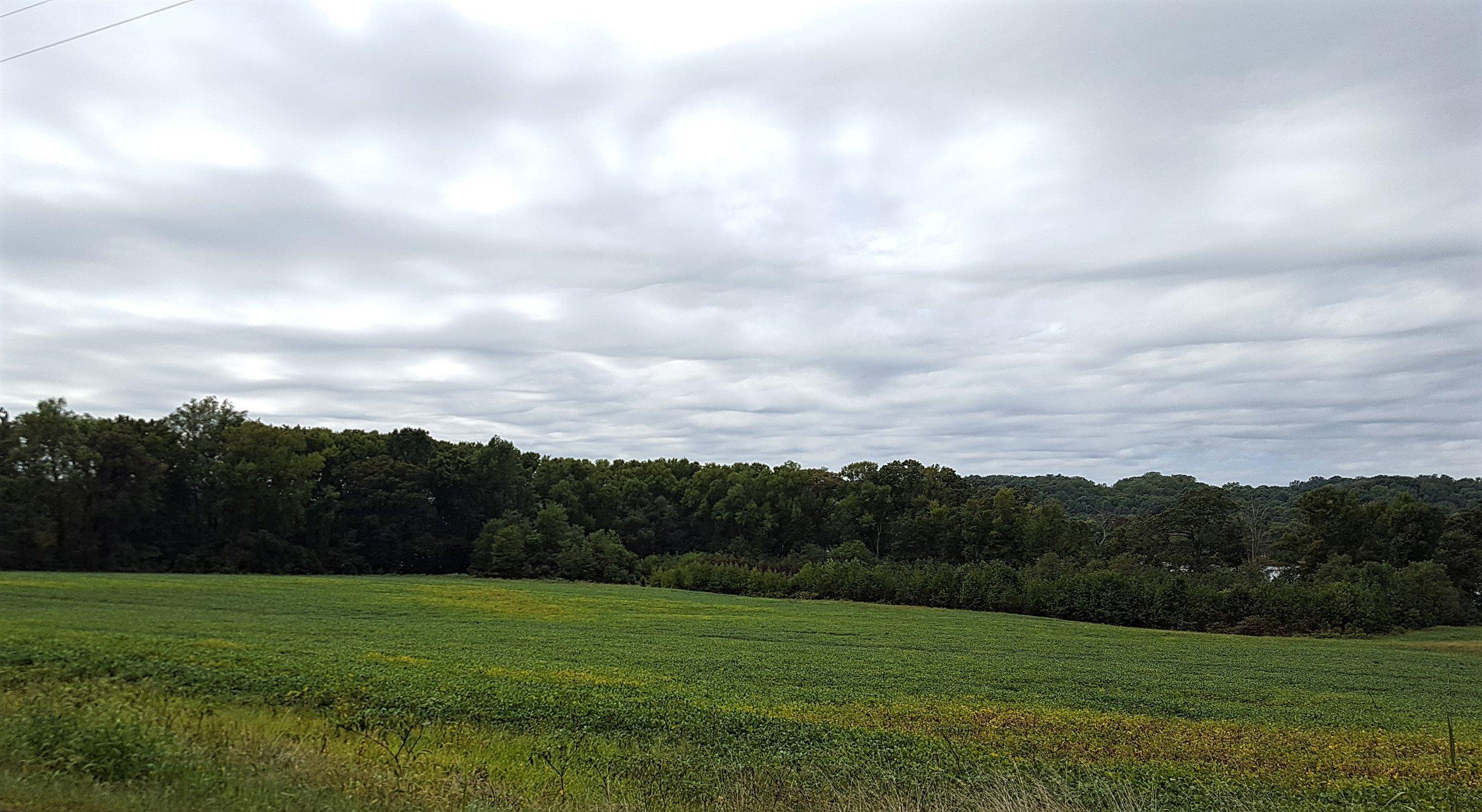 Maryland Countryside