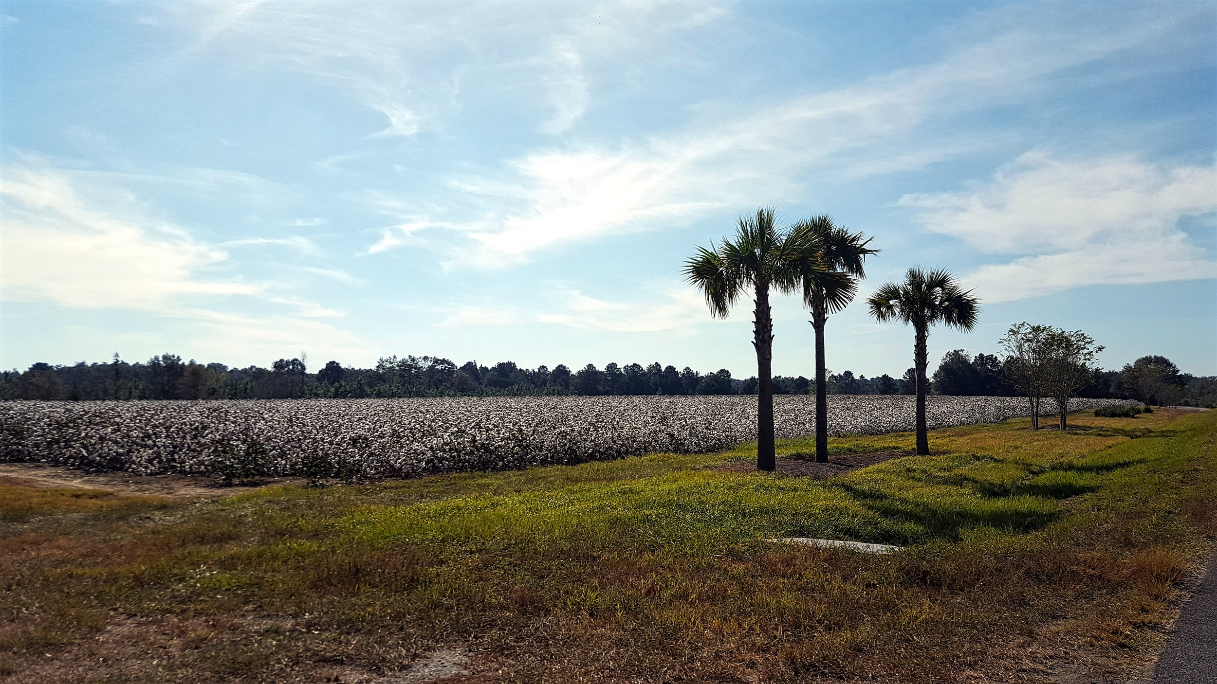 Florida/Alabama Border