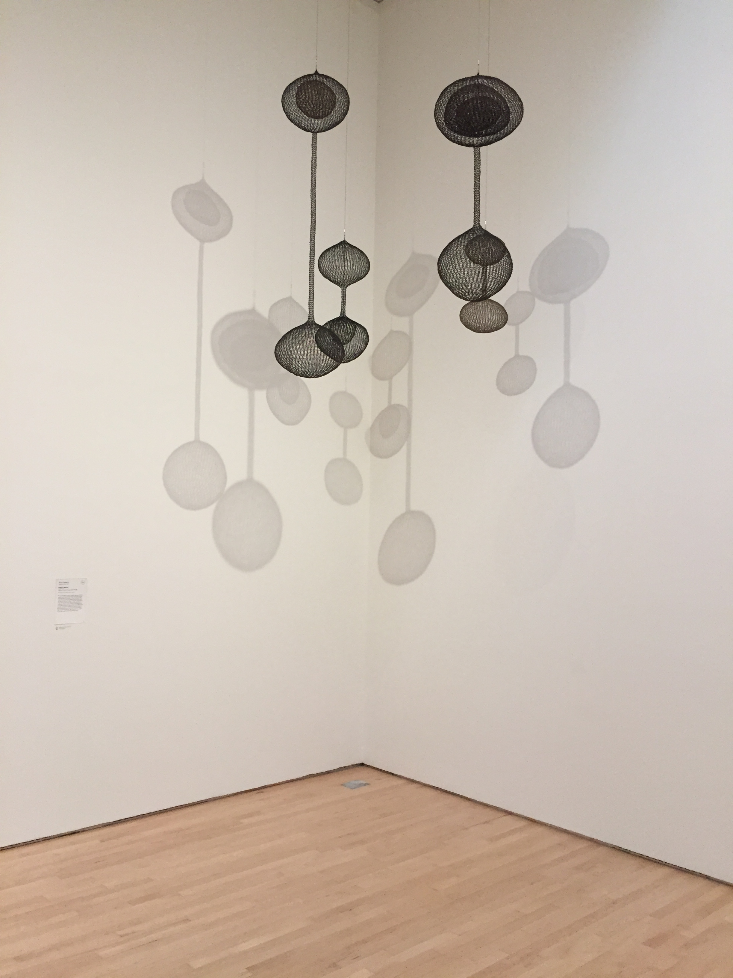 From Top MOMA SF by Brittney Fong.JPG