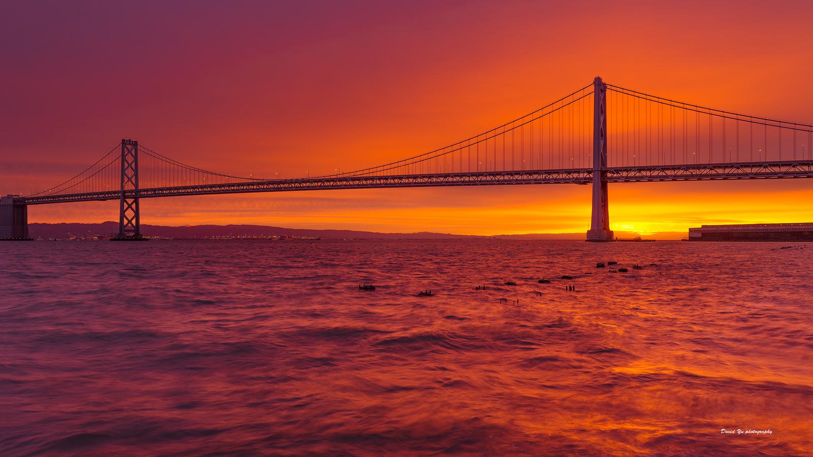 High.Tide-San.Francisco.Bay.David.Yu.jpg