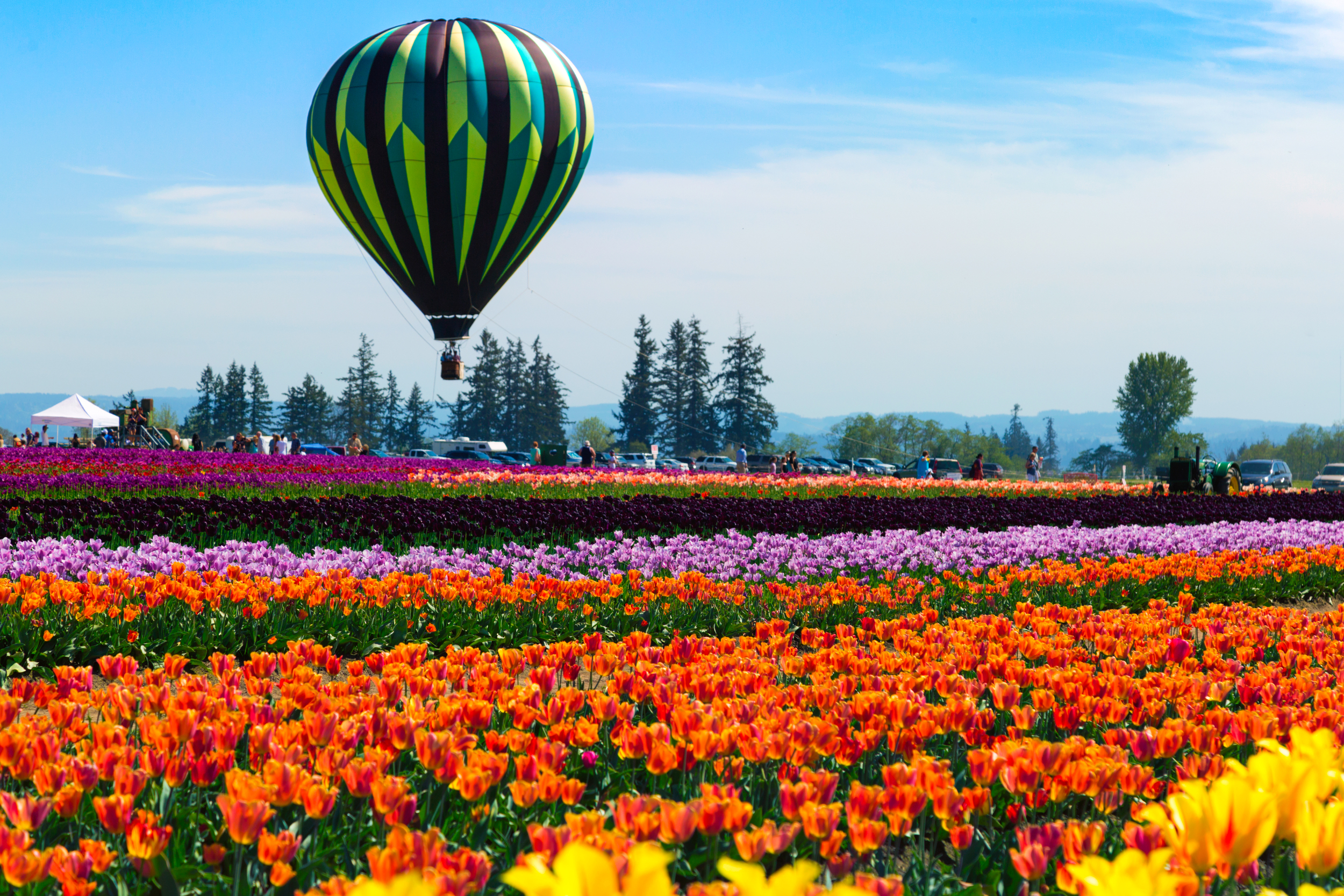 Top 5 Things To Do In Portland