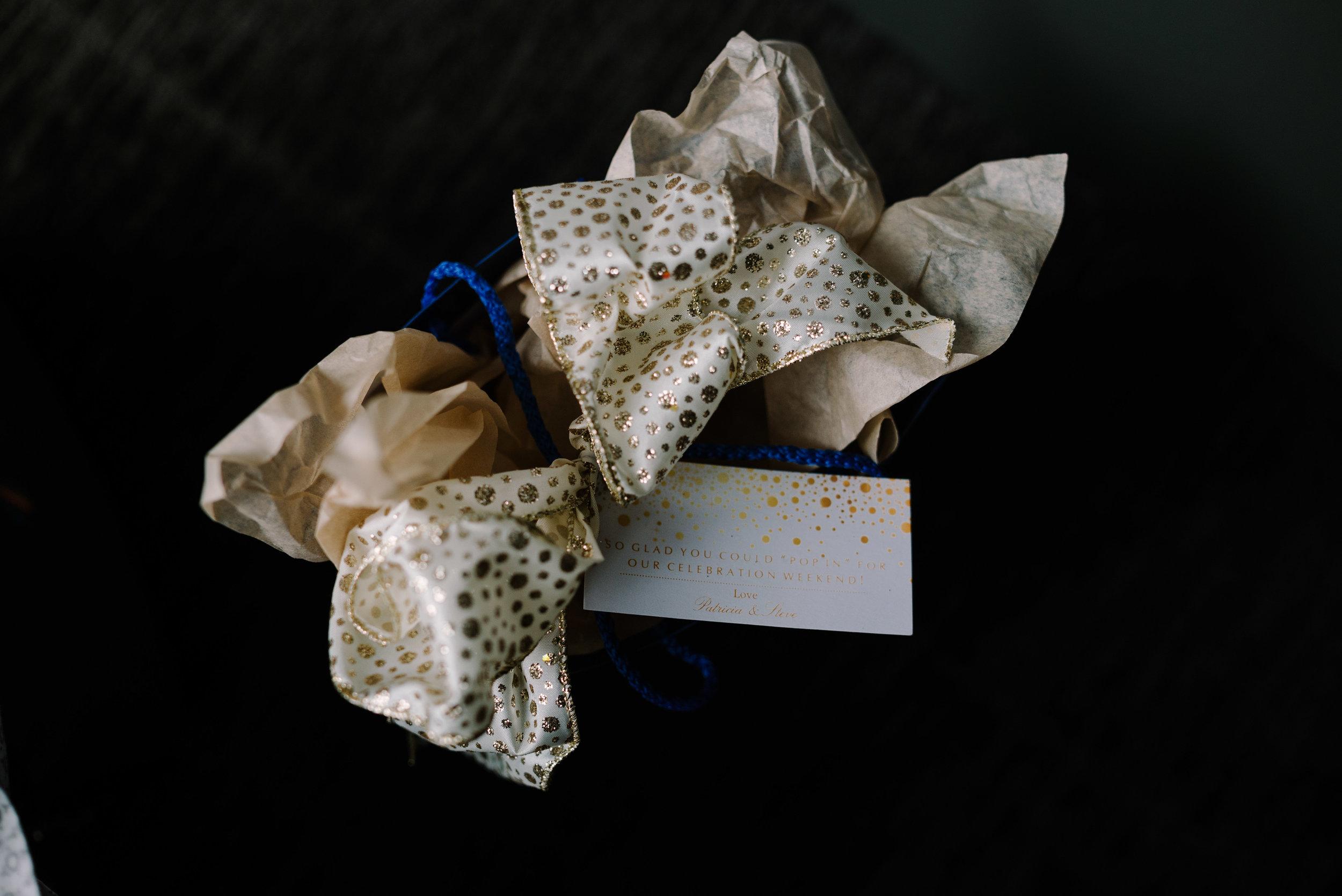 Patricia-Steve-Blog-Indianapolis-Wedding-8.jpg