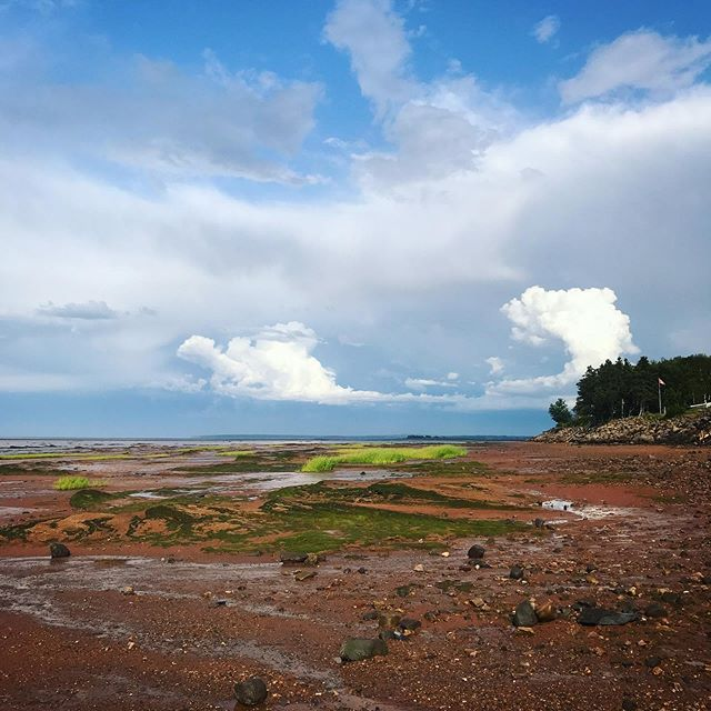 When walking on the floor of the ocean feels like you're on another planet 😲  #bayoffundy #novascotia #ocean #tides #alternativeroutes #travel #backpackerlife #fundyshore #maritimes #visitnovascotia #explorecanada