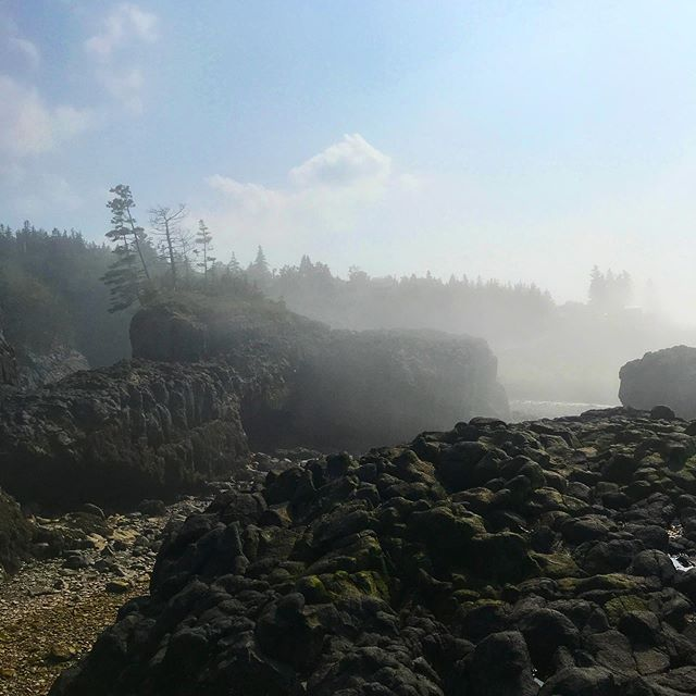 Nova Scotia weather is forever a mystery and she is constantly stirring up magic.  #tides #fog #bayoffundy #novascotia #travel #explorecanada #visitnovascotia #atlanticocean #alternativeroutes