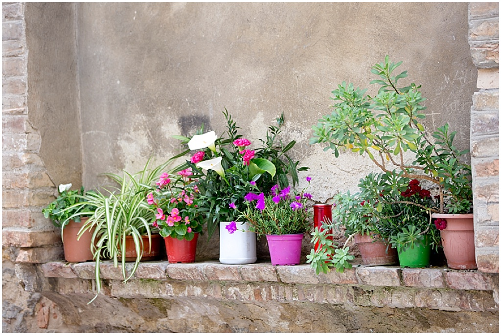 Tuscany_0050.jpg