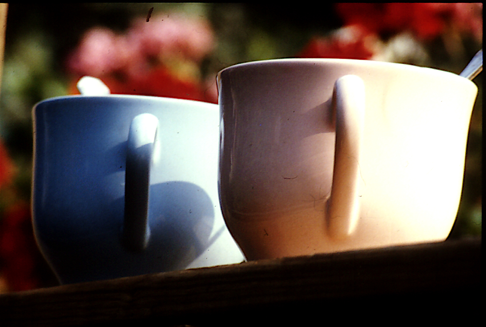 The Twin Picture Show, Cups.jpg