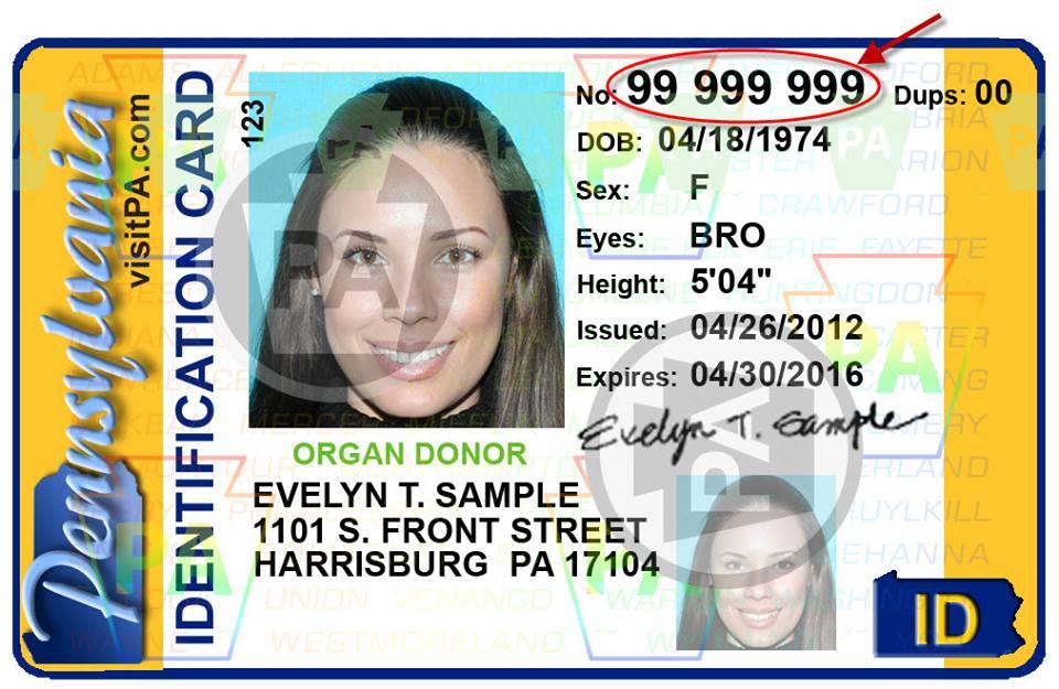 4. State ID.jpg