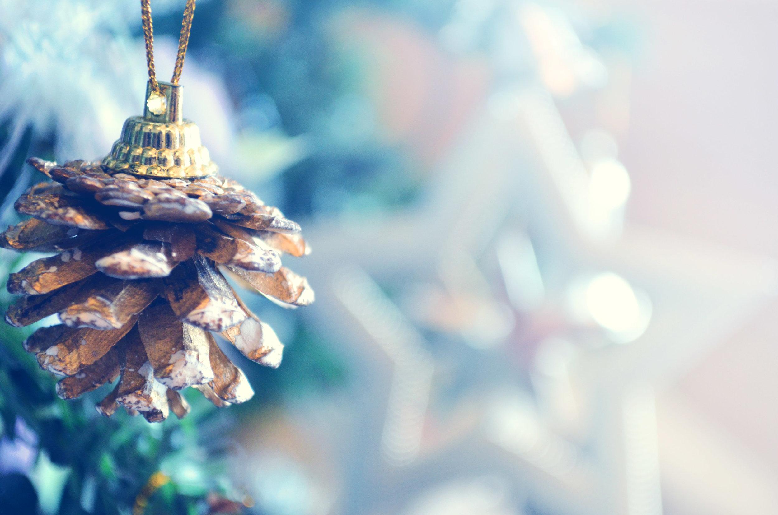 Avaia News - December 2016