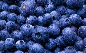 Blueberries - Clarkville