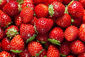 Strawberry - Grown;Tram Road Berry Farm