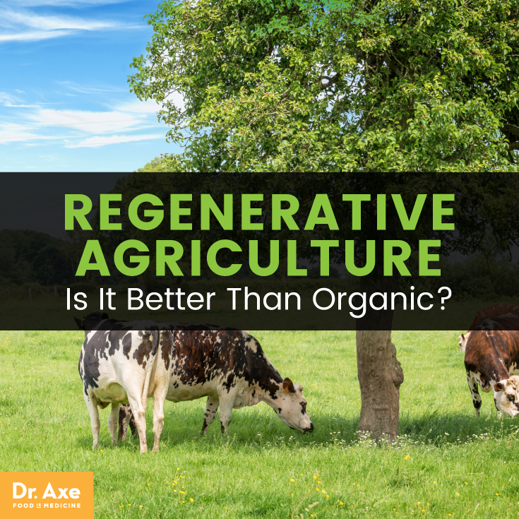 RegenerativeAgricultureHeaderThumbnail.jpg