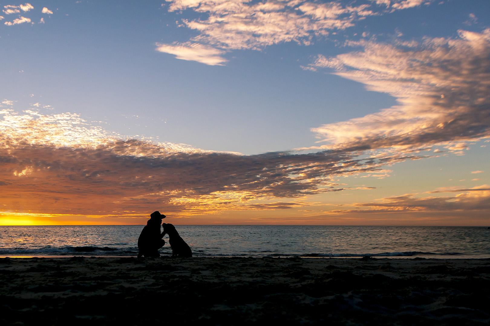 IMG_2575-Hillarys Beach dog silhouette photos.jpg
