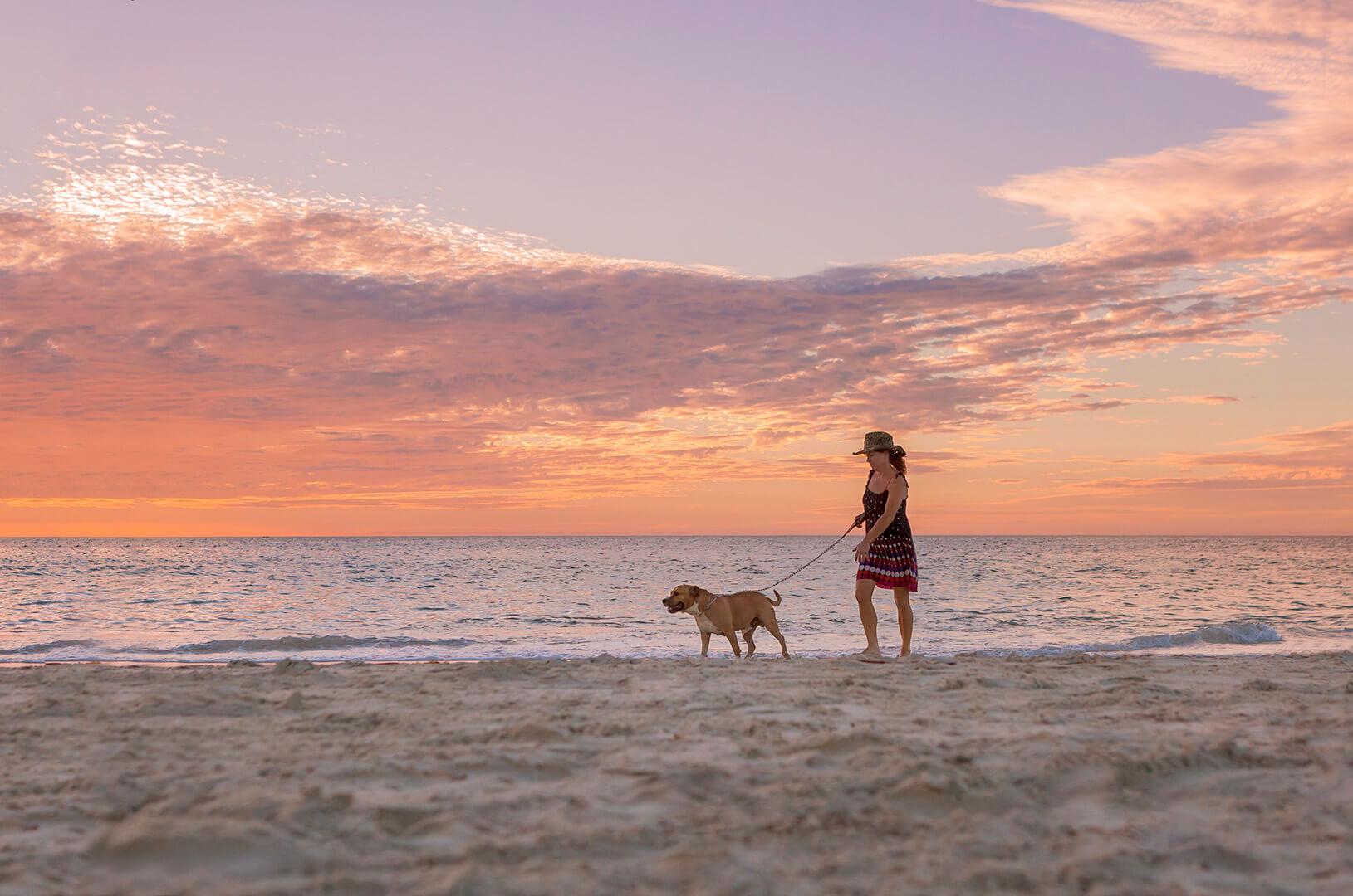 IMG_2566-dog on beach.jpg